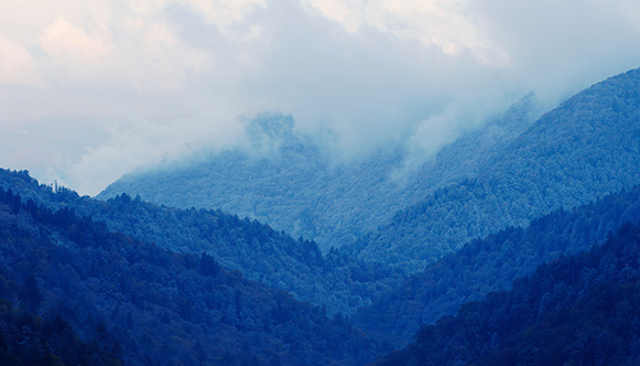Appalachia Mountains