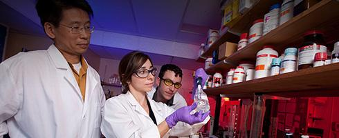 Graduate students in lab