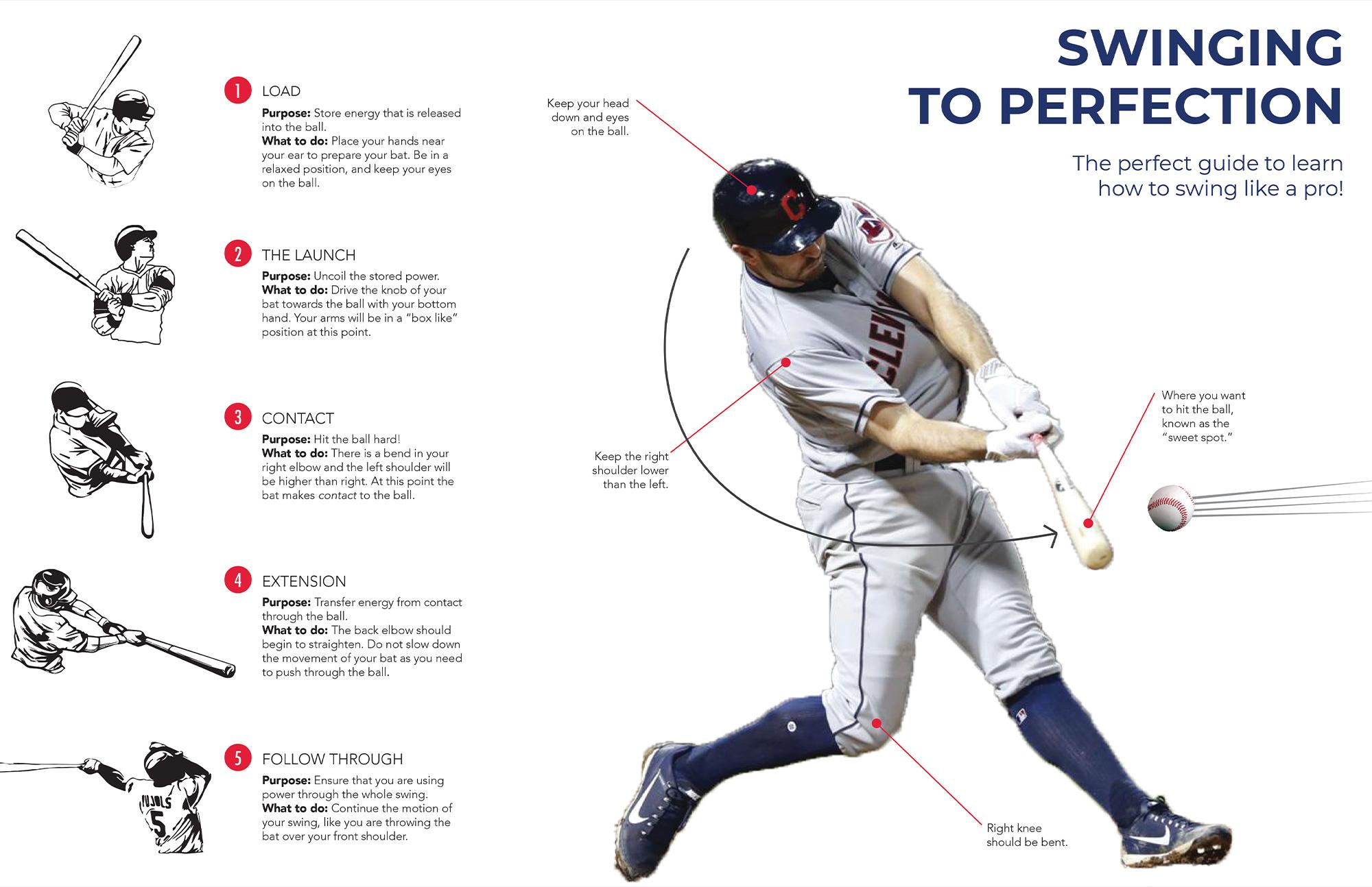 infographic baseball