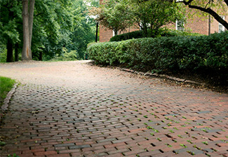 Brick flooring outside underneath foliage