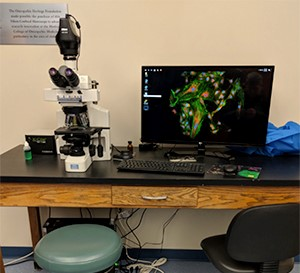 Widefield Fluorescence Microscope