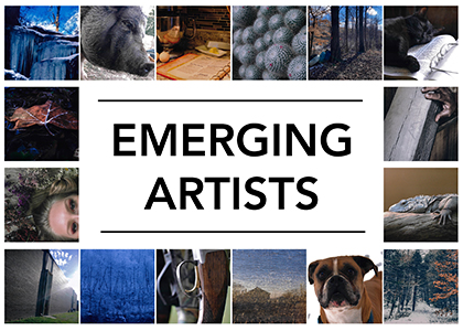 images of photographs in Emerging Artists exhibit