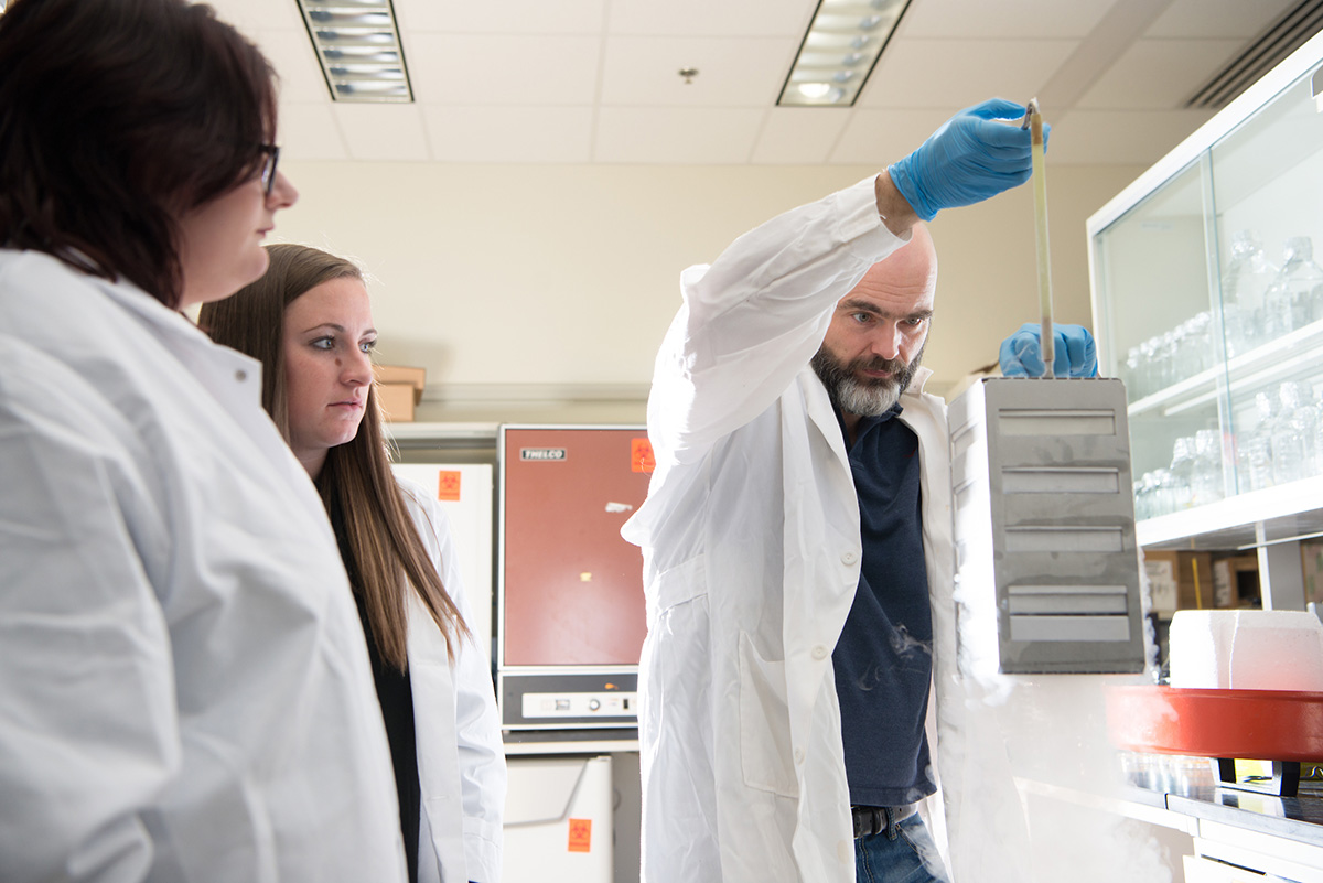 Dr. Ronan Carroll (right) works with lab students Rachel Zapf (Left) and Rebecca Keogh (Center) in his lab in the Life Sciences