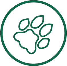 graphic displaying a paw print