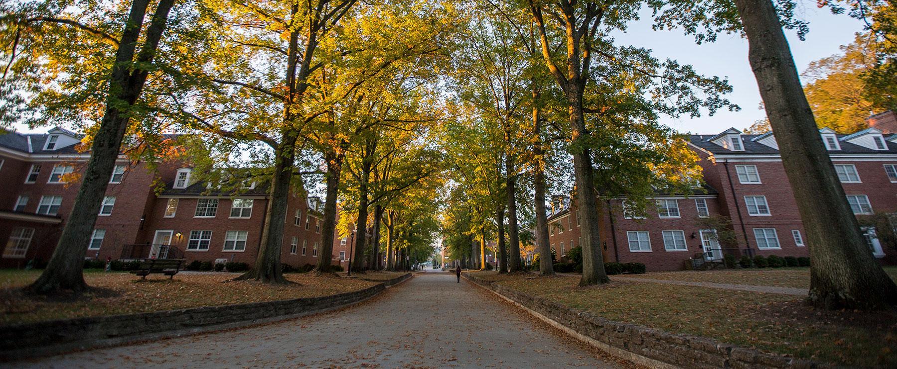 Hall Index   Ohio University