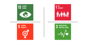Student Life-related SDG icons