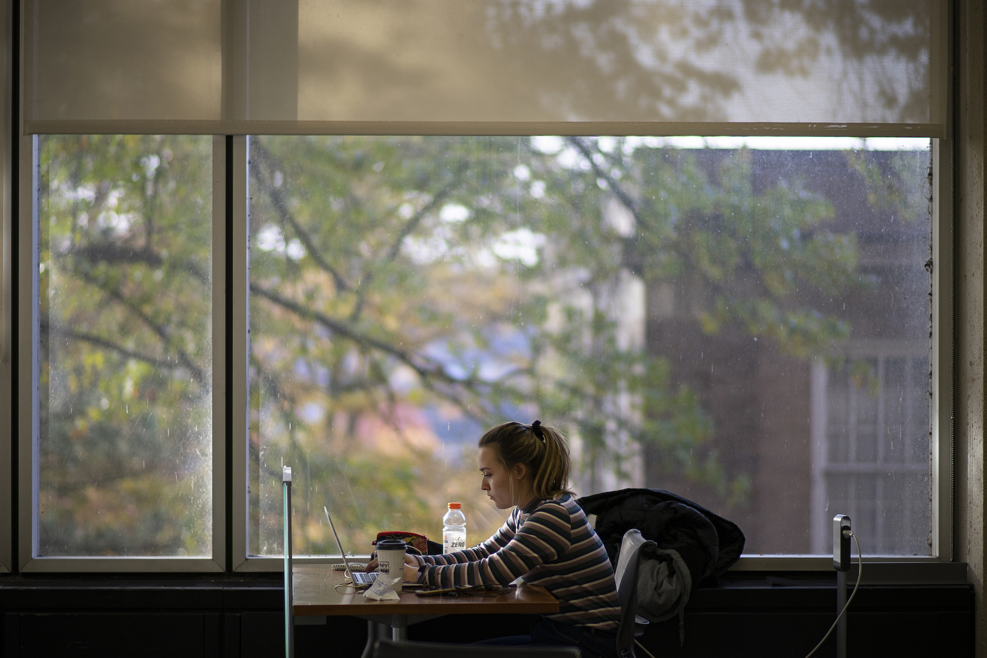 Student Studying at Library