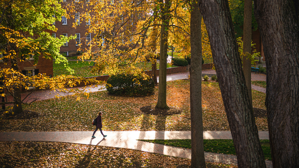 Main Campus Fall