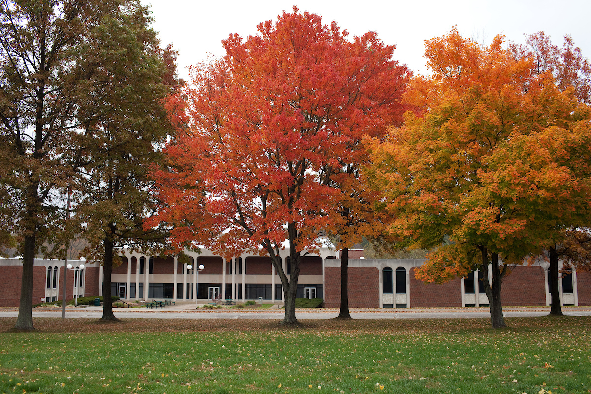 Trees on OHIO Lancaster campus with shades of green, red and yellow leaves