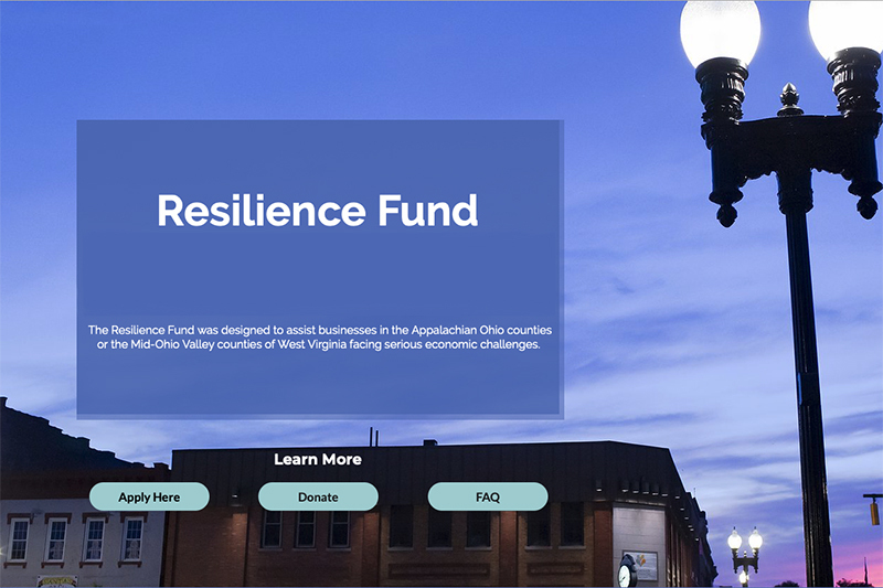 Resilience Fund Website